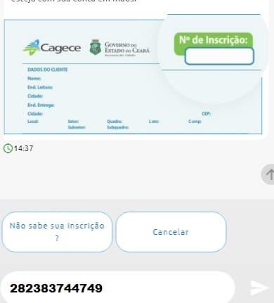 Print do Local para informar o número de inscrição e conseguir a Cagece 2 via de fatura