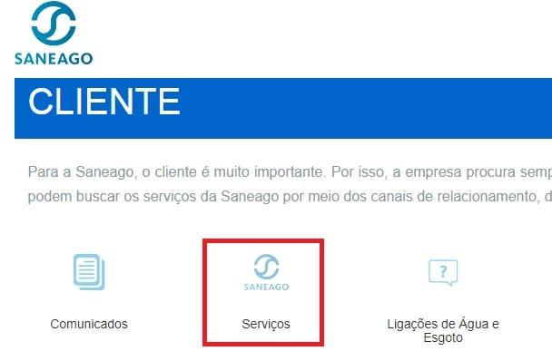 Print da página da Agência Virtual área de serviços
