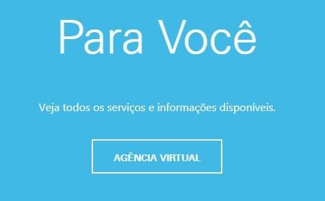 Print da página de acesso à Agencia Virtual Enel