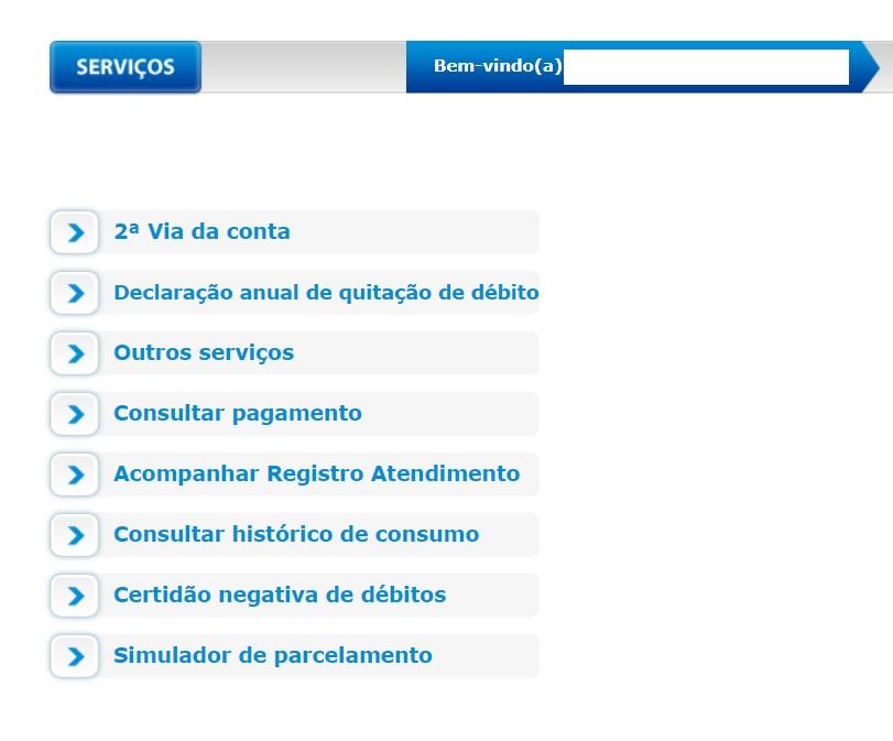 Pagina de acesso a e via da conta na Agência Virtual