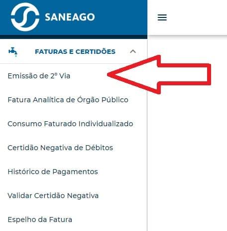 Print da Agência virtual Saneago - Emissão de 2º via