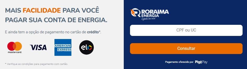 Print da Pagina para pagar a conta de luz com cartão de crédito